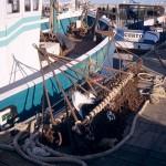 De la drague au dragueur, une histoire de pêcheurs?