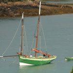 Vieux gréements, une flottille en évolution